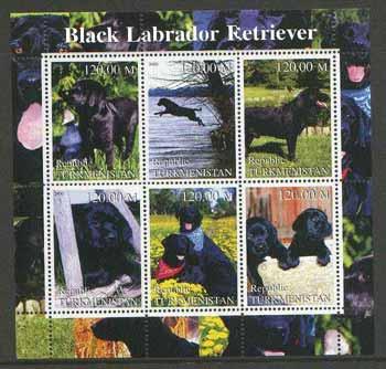 Turkmenistan 2000 Black labrador Retriever Dogs perf sheetlet containing set of 6 values  unmounted mint