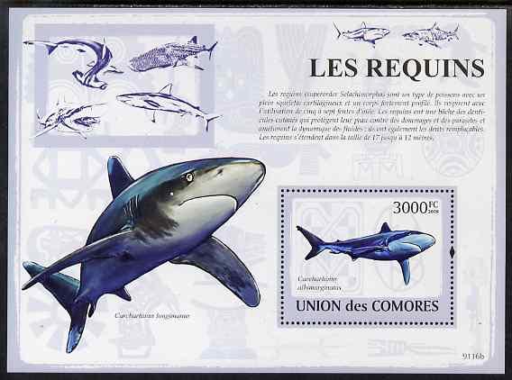 Comoro Islands 2009 Sharks perf s/sheet unmounted mint