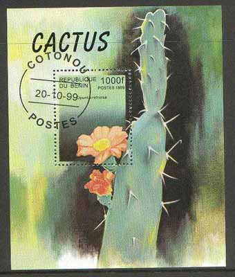 Benin 1999 Cactus Flowers m/sheet fine cto used