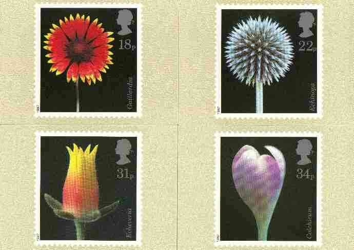 Great Britain 1987 Flower Photographs set of 4 PHQ cards unused and pristine