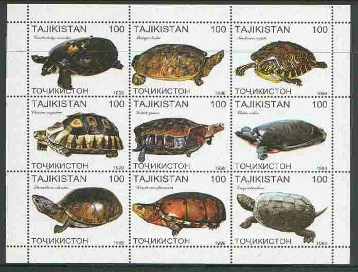 Tadjikistan 1999 Turtles perf sheetlet containing complete set of 9 values unmounted mint