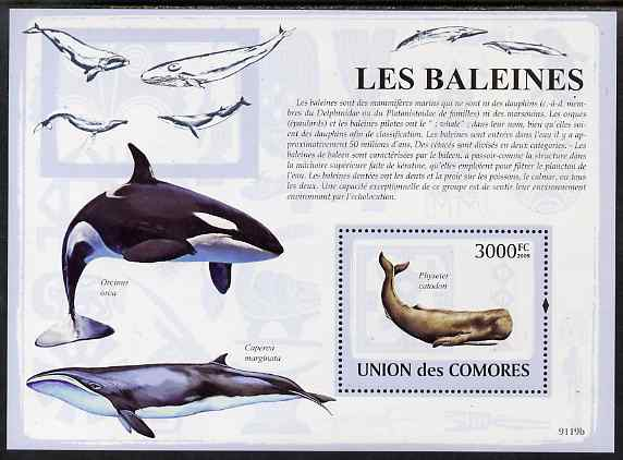 Comoro Islands 2009 Whales perf s/sheet unmounted mint