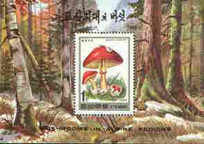 North Korea 1995 Fungi 1wn perf m/sheet unmounted mint SG MS N3498