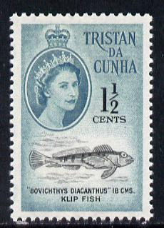 Tristan da Cunha 1961 Thornfish 1.5c from def set unmounted mint, SG 44