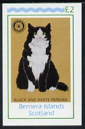 Bernera 1984 Rotary (Black & White Persian Cat) imperf deluxe sheet (�2 value) unmounted mint