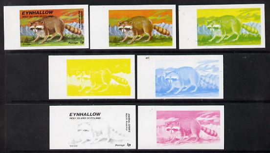 Eynhallow 1977 North American Animals 1p (Racoon) set of 7 imperf progressive colour proofs comprising the 4 individual colours plus 2, 3 and all 4-colour composites unmounted mint