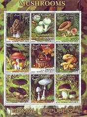 Somalia 2000 Mushrooms #2 perf sheetlet containing set of 9 values unmounted mint