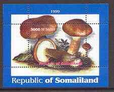 Somaliland 1999 Fungi perf souvenir sheet unmounted mint