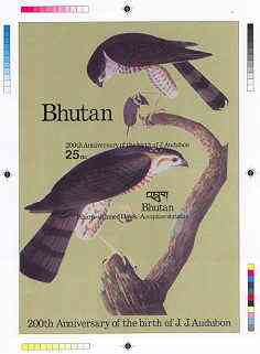 Bhutan 1985 John Audubon Bicentenary - Intermediate stage computer-generated essay #1 (as submitted for approval) for 25nu m/sheet (Sharp-shinned Hawk) 140 x 200 mm very ...