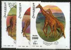 Somalia 2000 Giraffes perf set of 3 unmounted mint Michel 808-10*