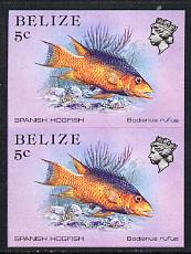 Belize 1984-88 Hogfish 5c def in unmounted mint imperf pair (SG 770)