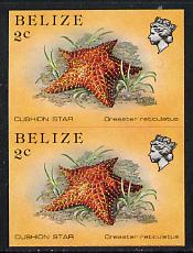 Belize 1984-88 Cushion Star 2c def in unmounted mint imperf pair (SG 767)