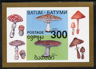 Batum 1994 Fungi imperf s/sheet unmounted mint