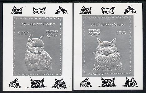 Batum 1994 Cats set of 2 s/sheets in silver