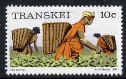 Transkei 1976-83 Tea Picking 10c (perf 14) from def set unmounted mint, SG 10a