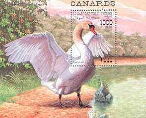 Somalia 1998 Water Birds (Swan) perf m/sheet, unmounted mint, stamps on , stamps on  stamps on birds, stamps on  stamps on swans