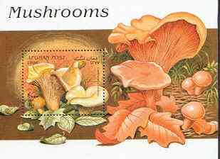 Afghanistan 1998 Fungi perf m/sheet unmounted mint