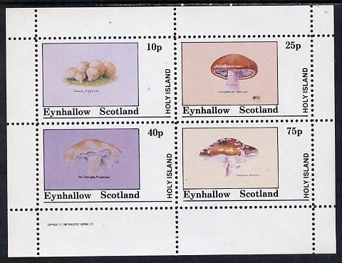 Eynhallow 1982 Fungi (Stump Puffball etc) perf set of 4 values (10p to 75p) unmounted mint