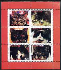 Udmurtia Republic 1998 Domestic cats #01 perf sheetlet containing set of 6 values unmounted mint, stamps on cats