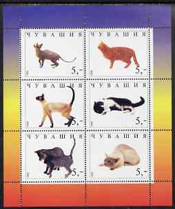 Chuvashia Republic 1998 Domestic cats #1 perf sheetlet containing set of 6 values unmounted mint