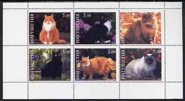 Ingushetia Republic 1998 Domestic cats perf sheetlet containing set of 6 values unmounted mint