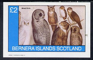 Bernera 1982 Birds #42 (Owls) imperf deluxe sheet (�2 value) unmounted mint