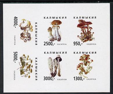 Kalmikia Republic 1998 Fungi imperf sheetlet containing complete set of 6 values unmounted mint