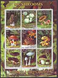 Somalia 2000 Mushrooms #2 perf sheetlet containing set of 9 values cto used