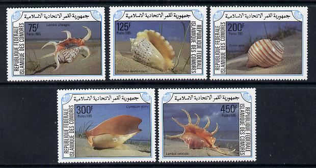 Comoro Islands 1985 Shells  set of 5 unmounted mint SG 566-70