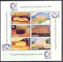 Gairsay 1995 Chinese New Year - Year of the Pig perf sheetlet containing 6 values with Singapore 95 logo in margins, unmounted mint
