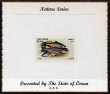 Oman 1972 Fish (Char) imperf (1b value) mounted on special 'Nature Series' presentation card inscribed 'Presented by the State of Oman', stamps on fish, stamps on charr