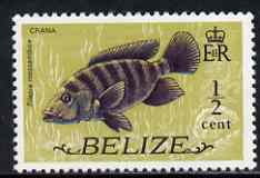 Belize 1974 Mouthbrooder (Crana fish) 1/2c (from def set) unmounted mint SG 362