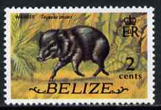Belize 1974 Peccary 2c (from def set) unmounted mint SG 364