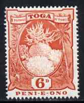 Tonga 1942-49 Coral 6d red unmounted mint SG 79*