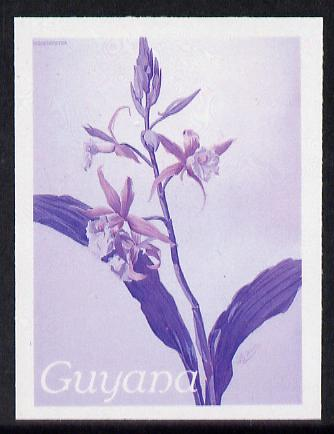 Guyana 1985-89 Orchids Series 2 plate 69 (Sanders' Reichenbachia) unmounted mint imperf progressive proof in blue & red only