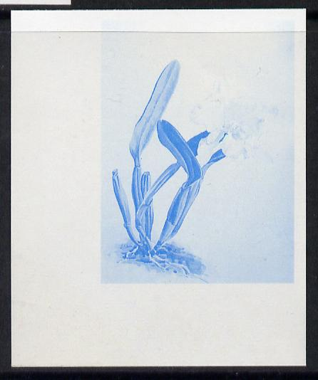 Guyana 1985-89 Orchids Series 2 plate 74 (Sanders' Reichenbachia) unmounted mint imperf progressive proof in blue only