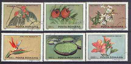 Rumania 1995 Plants from Bucharest Botanical Gardens perf set of 6 fine cto used, SG 5771-76