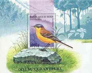 Benin 1997 Birds perf m/sheet (Yellow Wagtail) unmounted mint, SG MS 1658