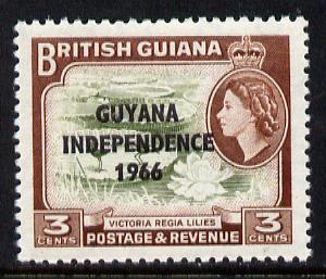 Guyana 1966 Water Lilies 3c with Independence opt (De La Rue opt on Script CA wmk) unmounted mint, SG 379