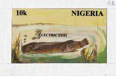 Nigeria 1991 Fishes - original hand-painted artwork for 10k value (Catfish) by unknown artist on card 8.5 x 5 endorsed A4