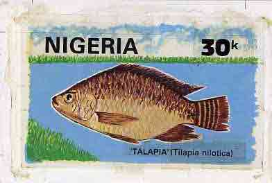 Nigeria 1991 Fishes - original hand-painted artwork for 30k value (Talapia) by Nojim A Lasisi similar to issued stamp on card 9 x 6