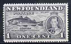 Newfoundland 1937 KG6 Coronation Codfish 1c (line perf 13.5 from 'long' KG6 Coronation set) unmounted mint, SG 257d*