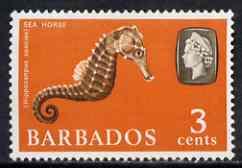 Barbados 1965 Seahorse (Hippocanpus) 3c def (wmk upright) unmounted mint SG 324