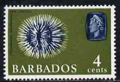 Barbados 1965 Sea Urchin 4c def (wmk upright) unmounted mint SG 325, stamps on marine life