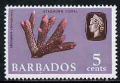Barbados 1965 Staghorn Coral 5c def (wmk upright) unmounted mint SG 326