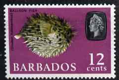Barbados 1965 Porcupine Fish (Balloon Fish) 12c def (wmk upright) unmounted mint SG 329