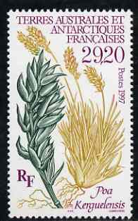 French Southern & Antarctic Territories 1997 Poa Kerguelensis (Plant) unmounted mint SG 373