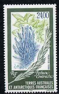 French Southern & Antarctic Territories 1999 Festuca contracta (grass) 24f unmounted mint, SG 402