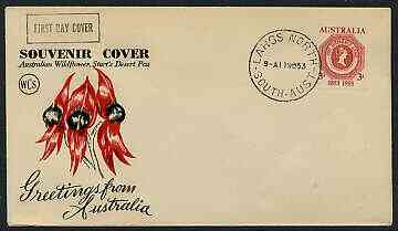 Australia 1953 Tasmanian Stamp Centenary on illustrated cover with first day cancel