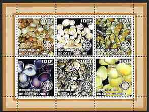 Ivory Coast 2002 Sea Shells #2 perf sheetlet containing set of 6 values (brown border) each with Rotary logo, unmounted mint